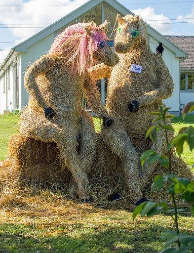 Scarecrow Horse