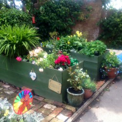 Raised planters after hard work from the community