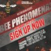 Bee Phenomenal, be a champ, be a boxer!